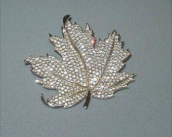 Huge Bond Boyd Pave Crystal Rhinestone Maple Leaf Brooch