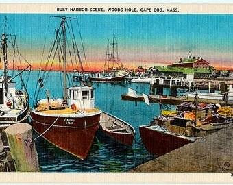 Vintage Cape Cod Postcard - Great Harbor at Woods Hole (Unused)