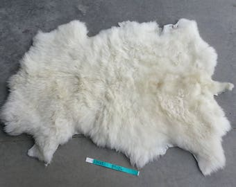 Sheepskin- White Medium Wooled Sheep Hide Lot No. 25053TURQ