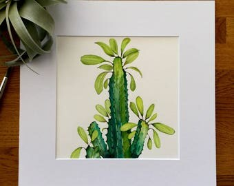 Original Watercolor Artwork - Euphorbia - Tropical - Watercolor Painting - Cactus - Matted - Ready to Frame
