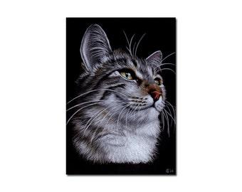 "5""x7"" COMMISSION PET Custom animal PORTRAIT Sandrine Curtiss Original Art animal colored pencil painting Gift dog cat wildlife"