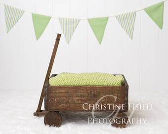 Easter Spring Wagon Boy Girl Newborn Digital Photography Backdrop