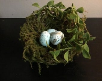 Petite Mossy Spring Birds nest with Robin's eggs- 3 1/2-4""