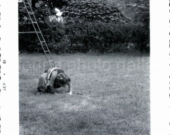 Vintage Photo, Young Girl Rolling on Lawn, Child on top of Ladder, Black & White Photo, Found Photo, Old Photo, Snapshot, Deckled Edge