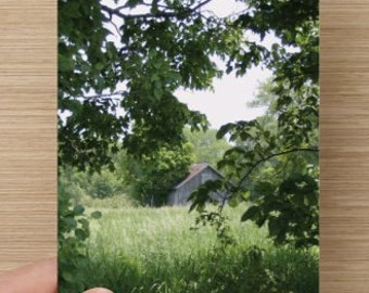 Rustic Little Barn in the Woods Landscape Photography on Blank Note Card Perfect All Occasion Note Card B3G1F