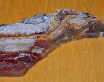 Crazy Lace Agate in Horse Head shape