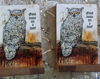 Owl Decorative Book Ends Good Books Are A Hoot