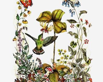 Blank Note Card 4 x 6 -Fairy and Bird Art