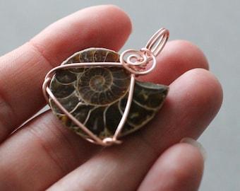 Ammonite Fossil Wire Wrap Pendant #7623