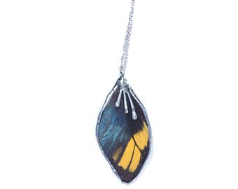 Real Mounted Butterfly Wing Necklace