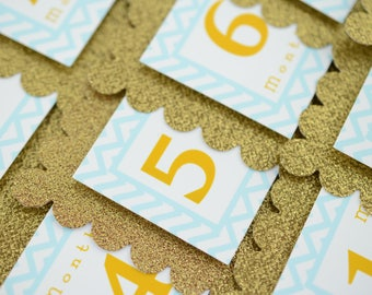 First Year Photo Banner, Glittered Gold and Pink Photo Banner, First Year Banner, Chevron Birthday Party, Gold & Light Blue colors, C-1275