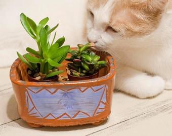 Terracotta Pottery, Succulent Planter, Terracotta planter, Hand Built pottery, earthenware planter, handmade clay planter, Bonzai plant dish