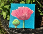 Poppy painting original acrylic - the first in a NEW alphabet series