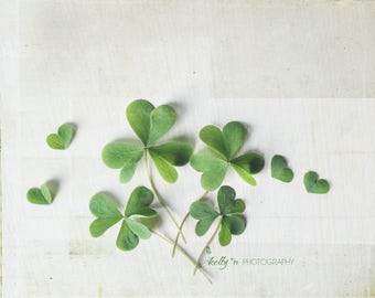 Nature Photograph- Shamrock Photo, Clover Print, Shamrock Hearts, Green Decor, Botanical Print, St Patricks Day Art, Lucky Clover Photo