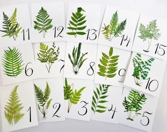 Fern Table Cards, Fern Table Numbers, Woodland Table Tents,  Wedding Table Cards, Wedding Botanicals, Fern Wedding Cards, Garden Table