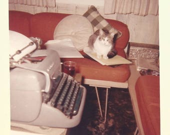 "Vintage Snapshot ""Office Kitty"" Tabby Cat Manual Typewriter Mid-Century Furniture Found Vernacular Photo"