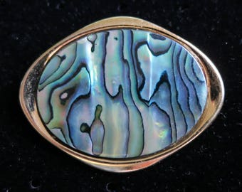 Vintage 70's shining abalone shell gold tone brooch oval stone retro (4877)