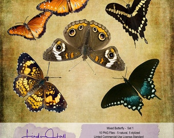 Mixed Butterfly Set 1