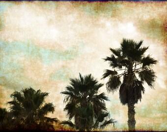 card palm trees california vintage style card #B4137