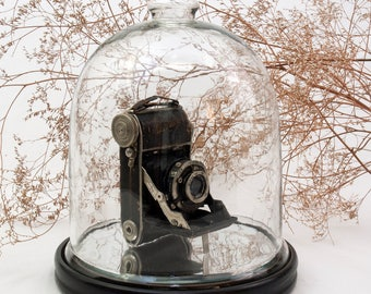 Baldina Camera Secret Box, Stash Box with Display Base & Cloche, upcycled repurposed 1930s Viintage Camera