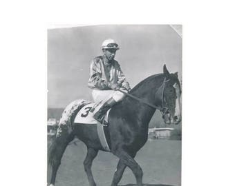 RPPC real photo postcard of War Step racehorse