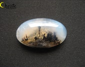 Natural scenery dendritic quartz picture moss agate oval cabochon 21x36x7mm