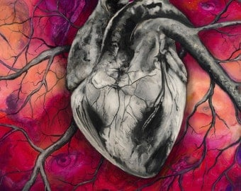 "Heart 5""x7"" Framed Art Print by Jamie Rice- Desk Art, Anatomy Wall Decor"