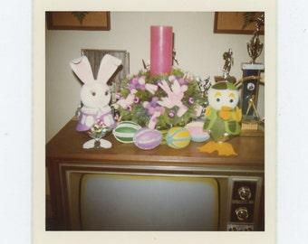 Vintage Snapshot Photo: Easter Display, 1972 (72551)