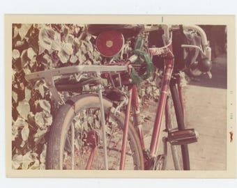 Vintage Snapshot Photo: Bicycle, 1972 (74566)