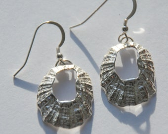 Medium Marazion Silver Limpet Drop Earrings