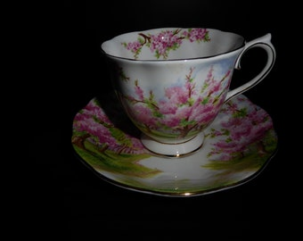 Vintage Royal Albert Bone China Blossom Time Tea Cup and Saucer