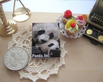 dollhouse panda bear national geographic  magazine 12th scale miniature