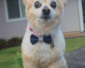 Denim dog and cat collar bow, pet collar bow, pet bow, pet bowtie, dog bowtie, cat bowtie, denim bow