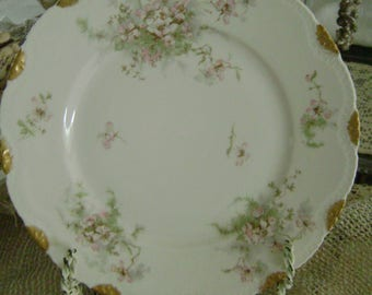4 Antique Theodore Haviland Limoges France 9 Inch Plates ~~ French Country Cottage ~~ Salad, Dinner, Luncheon