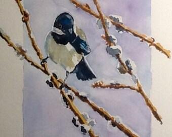 Canadian, Nova Scotia, Chickadee art, Original watercolor paintings