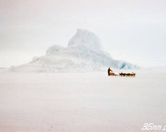 Kodachrome 35mm slide ~ Antarctic Exploration dog sled team ~ abstract view