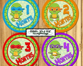 Ninja Baby Monthly Stickers Boy Turtle Monthly Milestone Stickers Monthly Infant Stickers Month Stickers Baby sbower Gift Baby Month decals