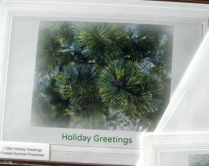 HOLIDAY GREETINGS Photo Stationary, Green Pine Boughs, Green Text, Classic Embossed Card Stock, Coordinating Envelope