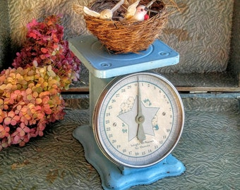 Vintage Baby Scale / Baby Boy Nursery / Blue Baby Scale / Photography Prop / Store Display