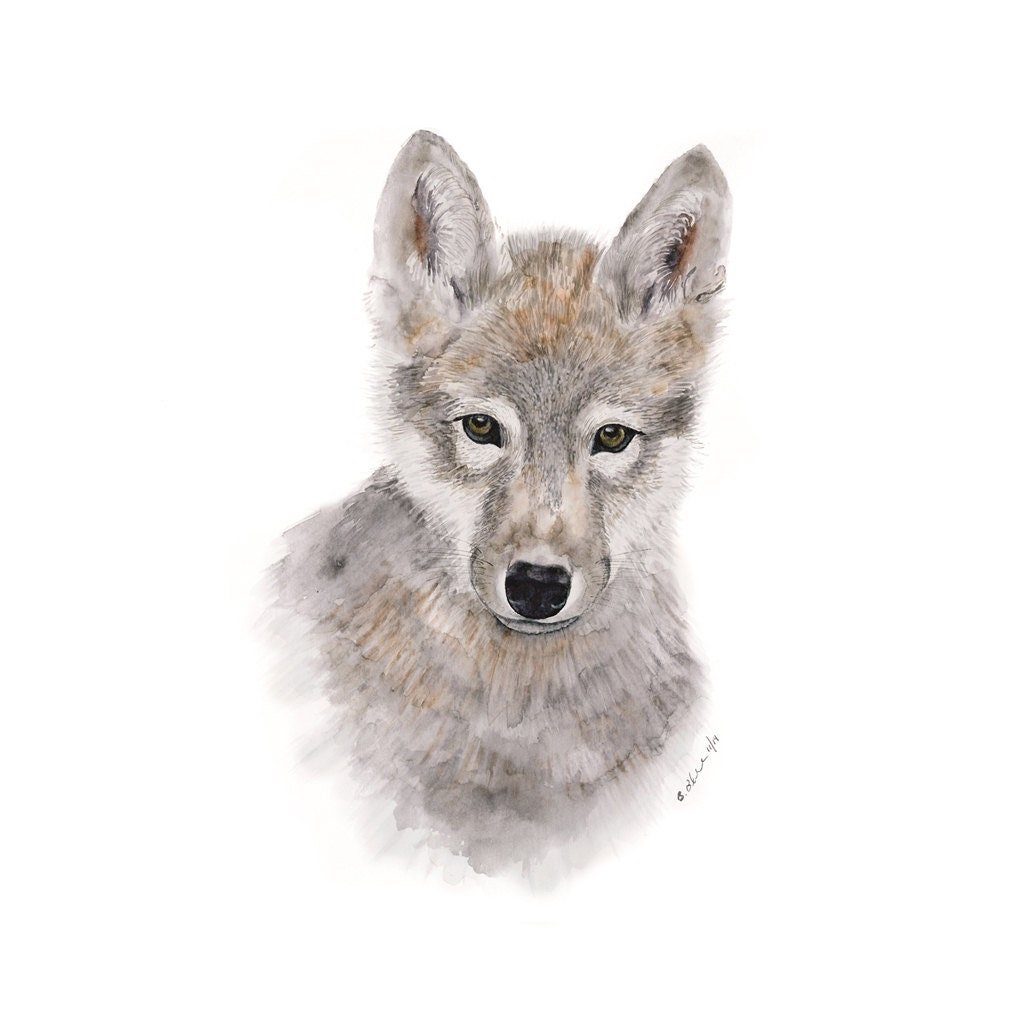 Wolf Art Baby Wolf Wolf Painting Wolf Pup Wolf Watercolor