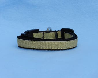XS Golden Dog Collar