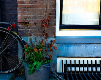 Amsterdam Bike and Window Photograph | Pack of Notecards or Postcards
