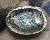 Abalone Shell Smudge Bowl, Large Abalone Shell Smudging Shell Positive Energy Premium Shell Smudge Pot Altar Dish, Healing Crystals & Stone