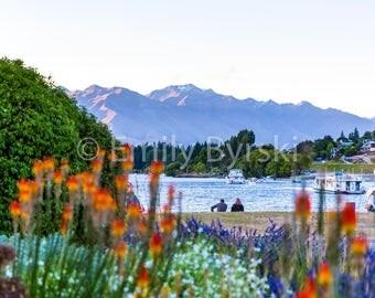 New Zealand Lake Wanaka Sunset Summer Wildflowers Photography Print - Various Sizes