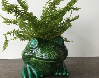 Vintage Frog Planter, Holland Mold | succulent planter, indoor planter, green indoor flower pot, green ceramic frog figurine, houseplants