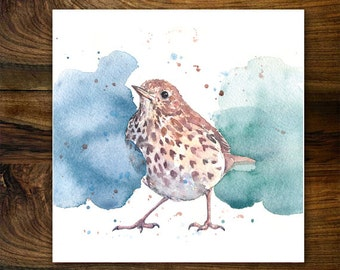 Song Thrush Card, Watercolour Garden Birds Card