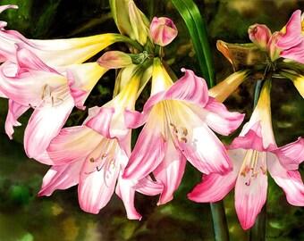 Rhythm of Nature, ORIGINAL watercolor painting, lilies, floral painting, flowers, watercolor flowers, original art, esperoart