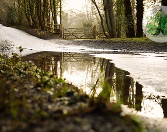 Damery Reflection, A4 Photography print, Gloucestershire, countryside landscape, water