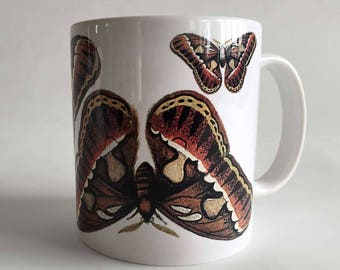 Moth Print Mug, Natural History Coffee Cup