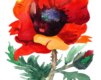 ORIGINAL Watercolor Painting POPPIES Flowers painting by Tara Tet